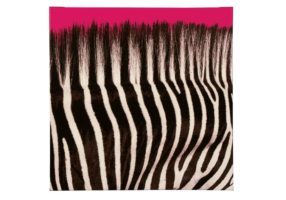 Jabbar Black/White/Hot Pink Wall Art | Cincinnati Overstock Warehouse
